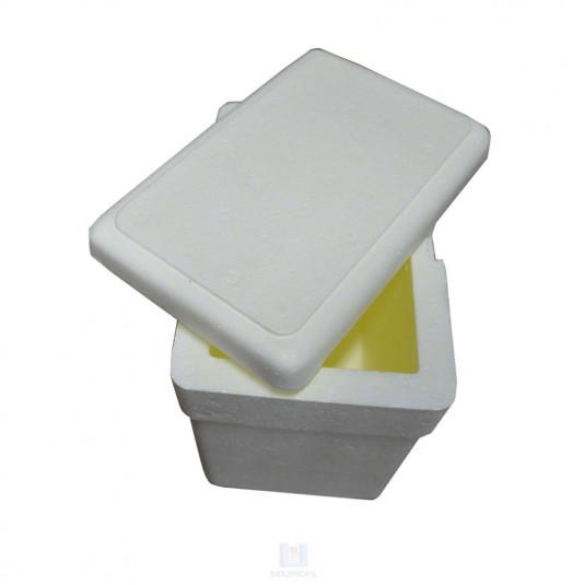 Imagem ilustrativa de Caixa Isopor 3 Litros