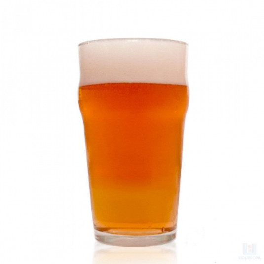 Kit Receita Cerveja American Pale Ale (APA)