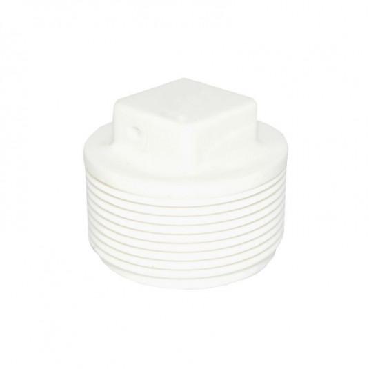 "Plug PVC Roscável 1"" BSP"