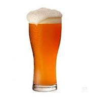 Copo de Cerveja Vienna Lager - 20 Litros