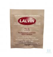 Levedura Lalvin 71B - 5gr