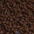 Grãos de Malte Patagônia Perla Negra
